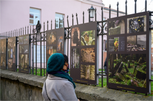 """Ulica Żydowska - wernisaż wystawy plenerowej ,,Strażnicy kirkutu"""""""