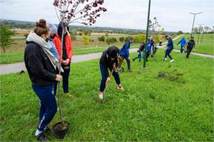 """Park Biegowy Marcinka - Akcja społeczna ,,W zielone gramy"""""""
