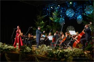 """Koncert świąteczno - noworoczny stowarzyszenia ,,Via Musica"""""""